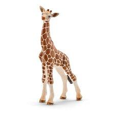 Schleich Zvířátko - mládě žirafy