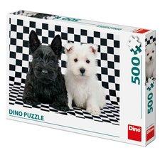 Černobílí psi 500D