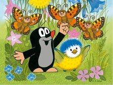 Kostky - Krtek a ptáček