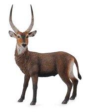 Zvířátko Antilopa vodní