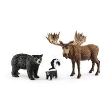 SCHLEICH Set lesní zvířátka severní Ameriky