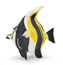 Ryba-Maurský idol
