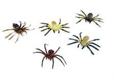 Rappa Pavouci, 5 ks v sáčku