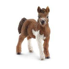 Schleich - Zvířátko - mládě shetlandského poníka