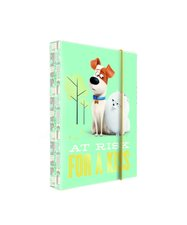 Karton P+P Heft box A4 PETS