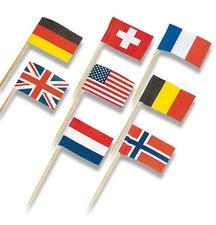 Napichovátka - vlaječky, 30 ks