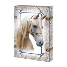 Argus Box na sešity A4 Horses