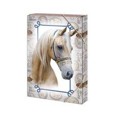Argus Box na sešity A5 Horses