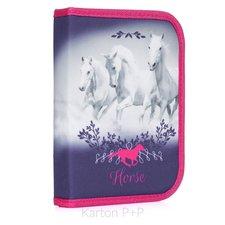 Karton P+P Penál 1 p. s chlopní, naplněný kůň