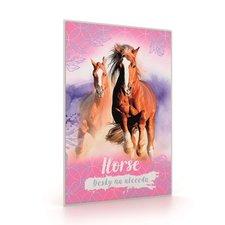 Desky na ABC kůň