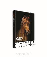 Box na sešity A4 Jumbo GEO WILD kůň 5-71018