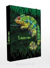 Karton P+P Box na sešity A4 chameleon