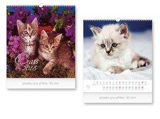 Kalendář 2018 nástěnný malý Cats