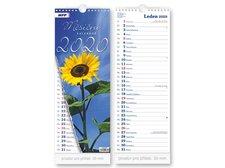 Kalendář 2020 nástěnný Měsíční - vázankový