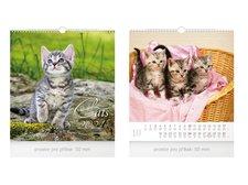MFP Kalendář 2021 nástěnný malý Cats
