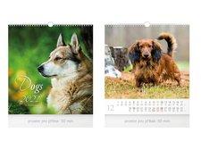 MFP Kalendář 2021 nástěnný malý Dogs