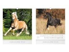 MFP Kalendář 2021 nástěnný malý Horses