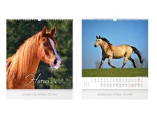 MFP Kalendář 2022 nástěnný malý Horses