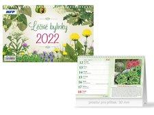 MFP Kalendář 2022 stolní Léčivé bylinky