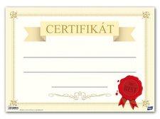 Dětský diplom A4 MFP DIP04-014