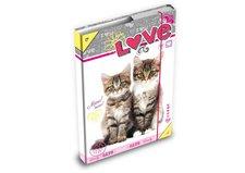 MFP Desky na sešity box A4 Kočky
