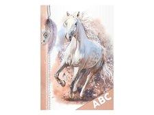 Desky na ABC MFP Kůň