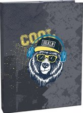 Stil Box na sešity A4 Cool bear