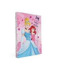 Školní box A5 Princess