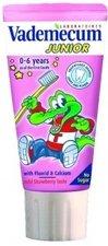 Zubní pasta VADEMECUM 50ml Junior jahoda