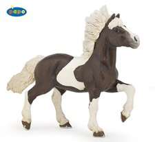 Kůň islandský strakatý