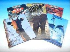 Deska A4 zvířata s klipem