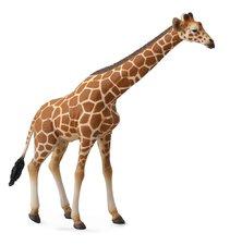 Zvířátko Žirafa