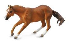 Zvířátko Quarter horse