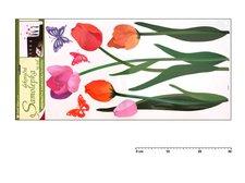 Samolepící dekorace 10033 barevné tulipány 69x32cm
