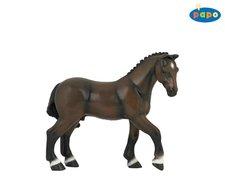 Kůň francouzský