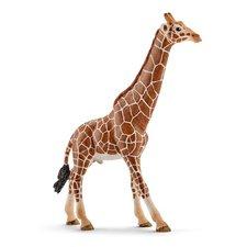 Schleich - Zvířátko - žirafa samec