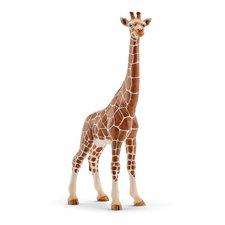 Schleich - Zvířátko - žirafa samice
